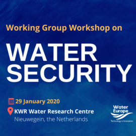 Working Group Workshop on Water Security