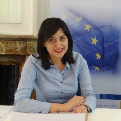 Hasmik Barseghyan, President of the European Youth Parliament for Water talks to us about the highlights of her presidency & her future plans