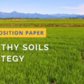 Soil protection: Building on the Water-Soil Nexus for an integrated & Circular Economy