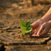 EU adopts new strategy on Adaptation to Climate Change