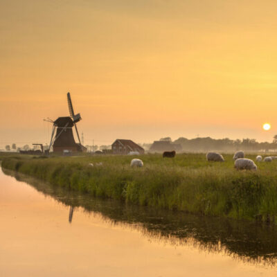Long-term vision for rural areas: for stronger, connected, resilient, prosperous EU rural areas