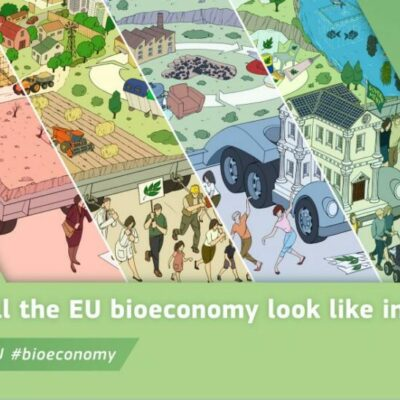How might the European bioeconomy look in 2050? Experts unveil 4 future scenarios