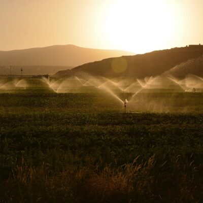 The European Court of Auditors assesses how sustainable is the use of water in agriculture