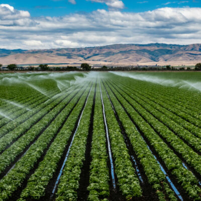 Challenges and options to measure progress in agricultural water management explained