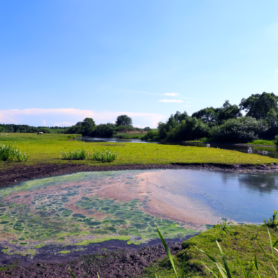 EEA shows limited improvements in the ecological status of surface waters in Europe